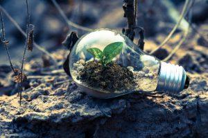Lees meer over het artikel Zo draag jij bij aan een beter milieu